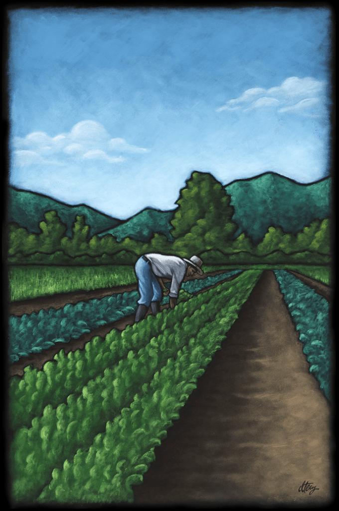 Adolfo's Harvest