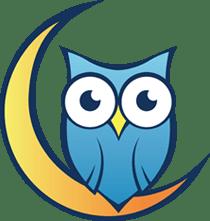 Night Owl T-Shirt Quilts